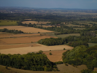 View over the weald