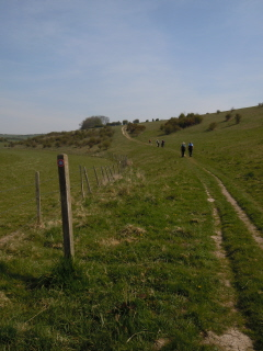 Stanmer Down
