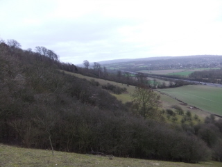 North Downs (scarp)